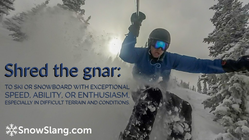 shred the gnar meaning photo
